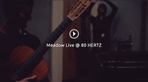 Meadow - Live